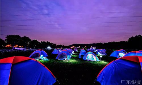 荧光帐篷节.jpg